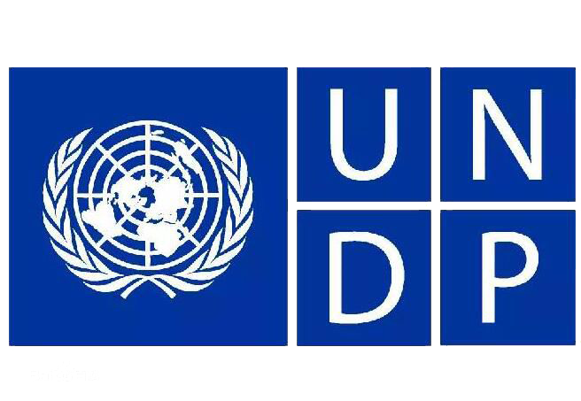 """Survey report"" of UNDP"